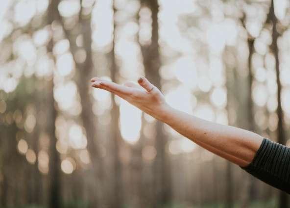 Stage de yoga Cocoon